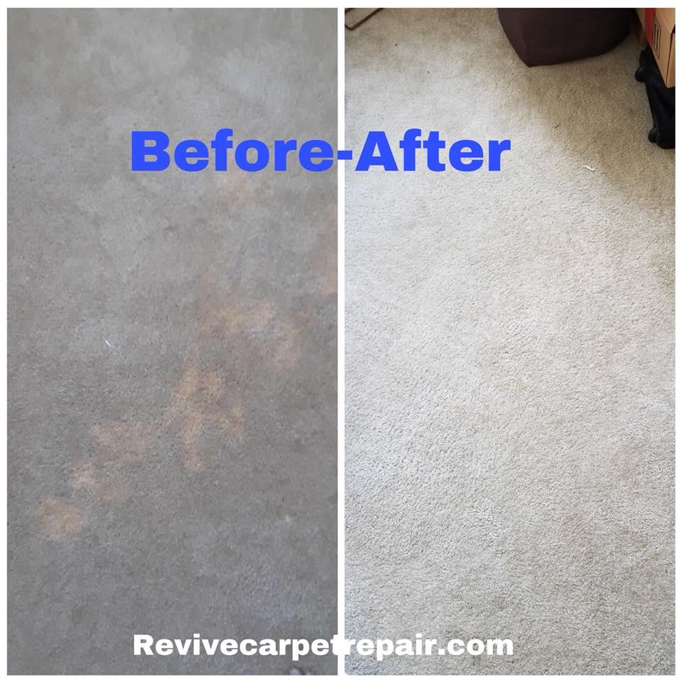 Bleach Spots 213 536 4934 Expert Los Angeles Rescue Carpet Repair Fair Top Quality